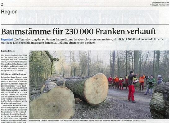 Wertholzverkauf Katzensee 2019